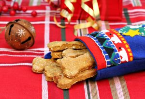 Dog Biscuits made with pumpkin and bacon in Christmas stocking